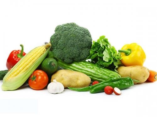 时令蔬菜配送方案