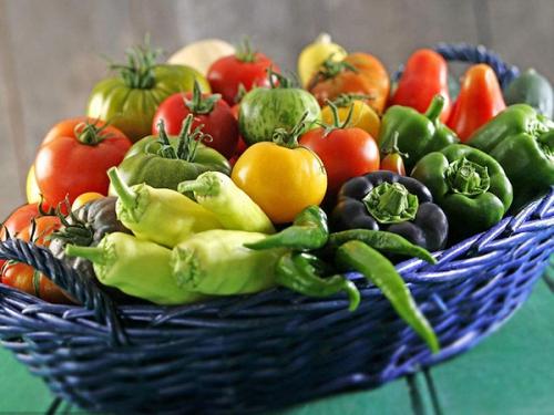 昆山蔬菜配送